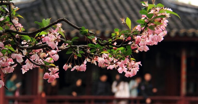 Spring in Suzhou