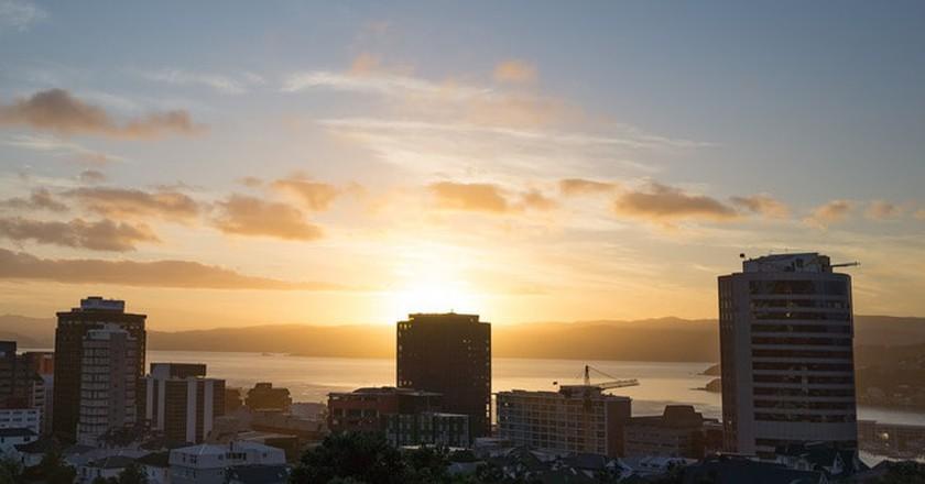 The Best Backpacker Hostels in Wellington, New Zealand