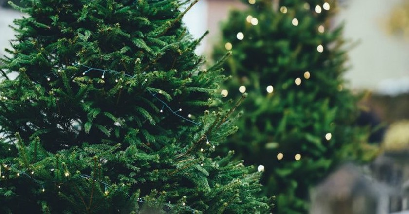 Christmas Markets | © Annie Spratt / Unsplash