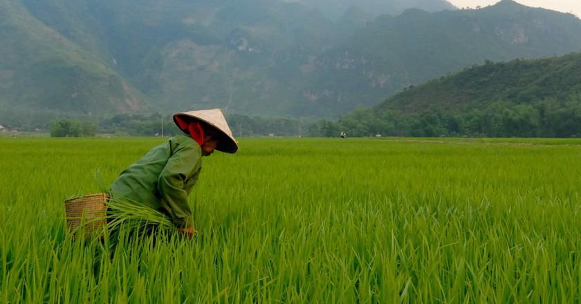 Beautiful Vietnam | © M M/Flickr