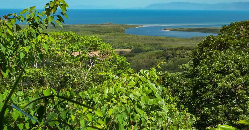 Daintree Rainforest | © dronepicr/WikiCommons