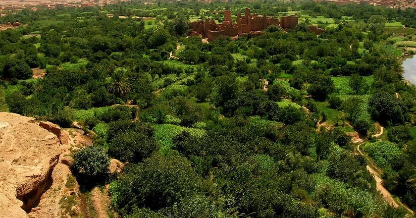 Kalaat M'Gouna, Morocco  ©Lluc Ulldemolins/WikiCommons