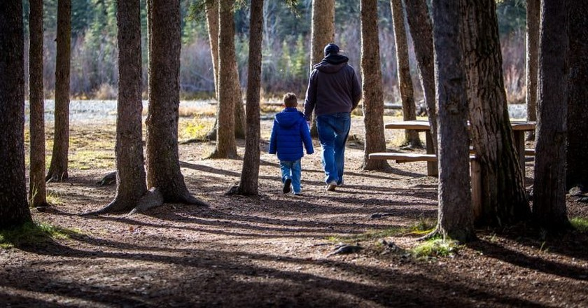 Father and child walking in the forest   © laterjay / Pixabay