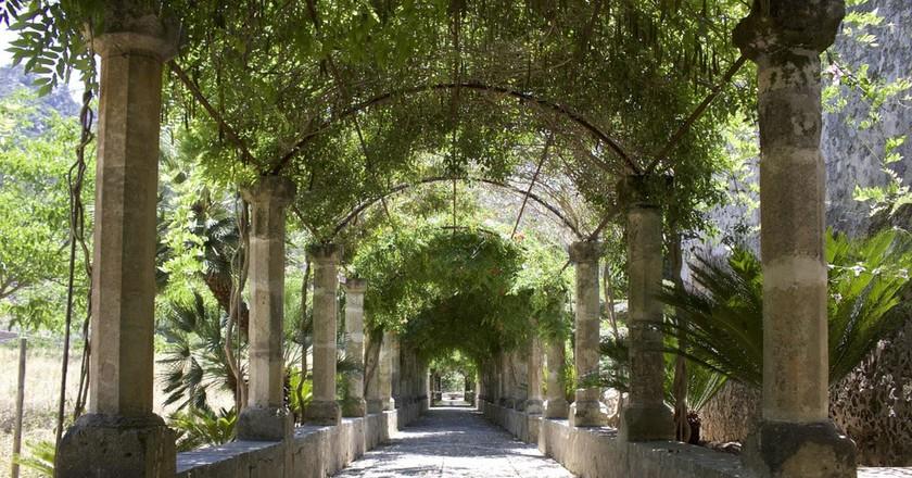 Alfabia Gardens | Leon Beckenham / © Culture Trip