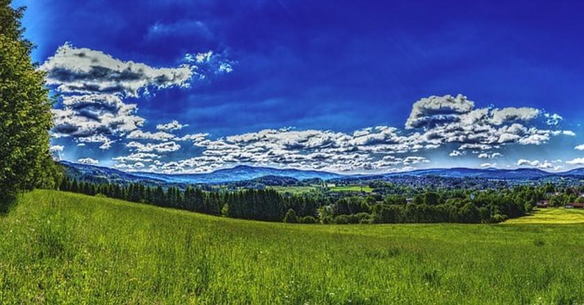 Bavarian National Park panorama | © FelixMittermeier / Pixabay