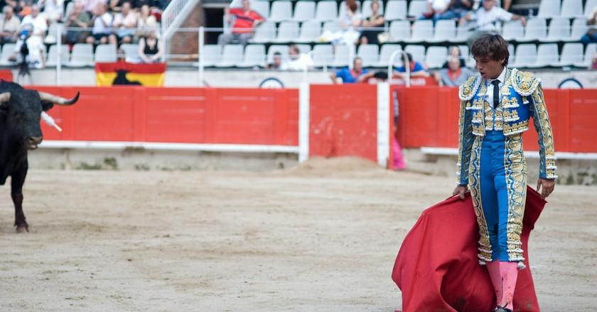 The majority of Spaniards do not support bullfighting| © memyselfaneye / Pixabay