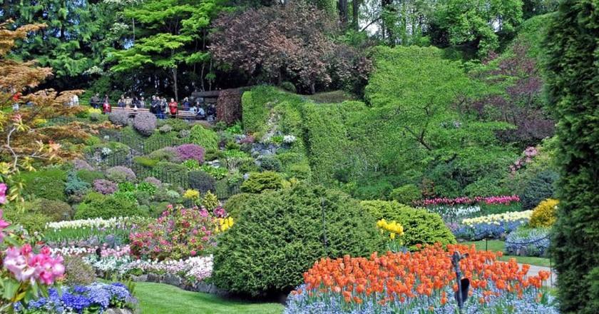 Butchart Gardens | © Aaron Carlson / Flickr
