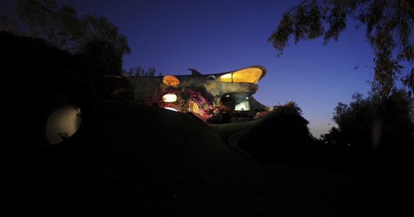 The Shark at the Organic house | © Photo courtesy of Javier Senosiain