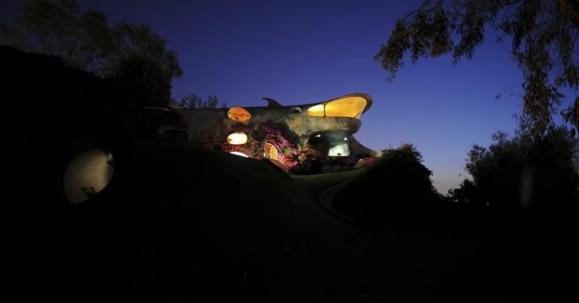 The Shark at the Organic house   © Photo courtesy of Javier Senosiain