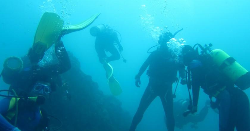 Diving   © jeff~ / Flickr