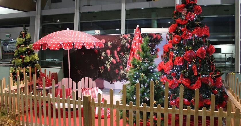 New Zealand Christmas Decorations | © Kristina D.C. Hoeppner/Flickr