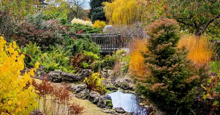 Golders Hill Park | © Wikimedia Commons