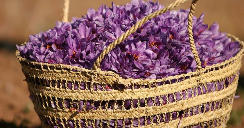 Saffron flowers | © Safa.daneshvar / WikiCommons