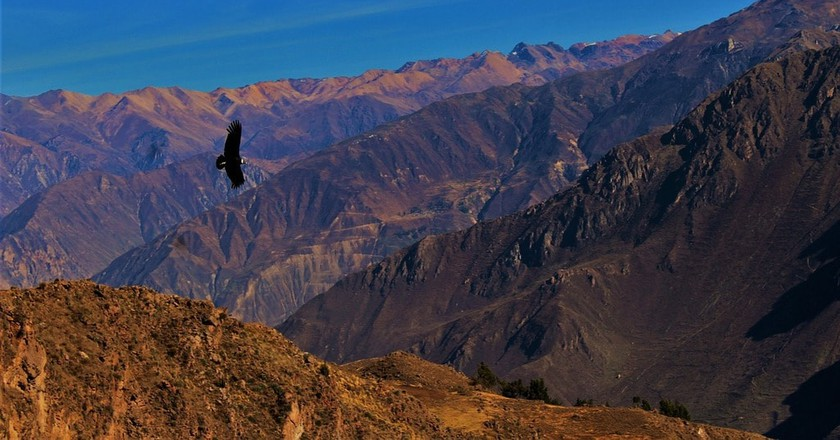 Colca Canyon in Arequipa, Peru |