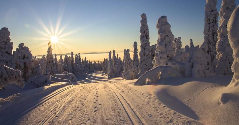 Road in Lapland | © adege / Pexels