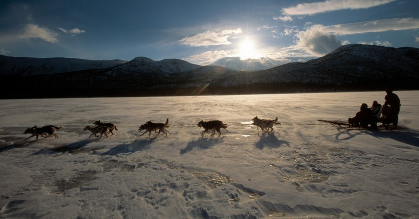 Dog sledding | © Staffan Widstrand / imagebank.sweden.se