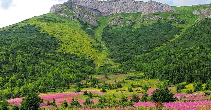 Enjoy the finest views of Slovakia's stunning mountains © Kamilfoto/Pixabay