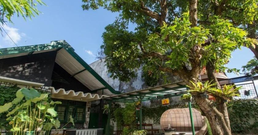 Mango Tree Hostel © Mango Tree Hostel / Hotels.com