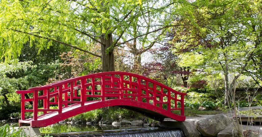 Cranbrook Gardens | © Barbara Eckstein / Flickr