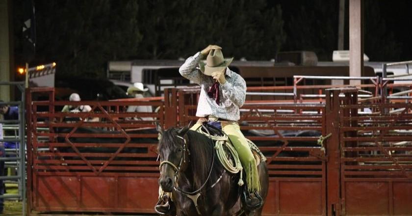 Cowboy at rodeo | © jeremyjack / Pixabay