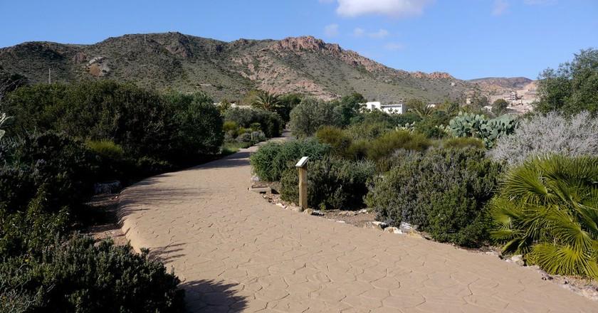 The Albardinal Botanical Garden, in Almeria's Cabo de Gata Natural Park I © Nanosanchez / WikiCommons
