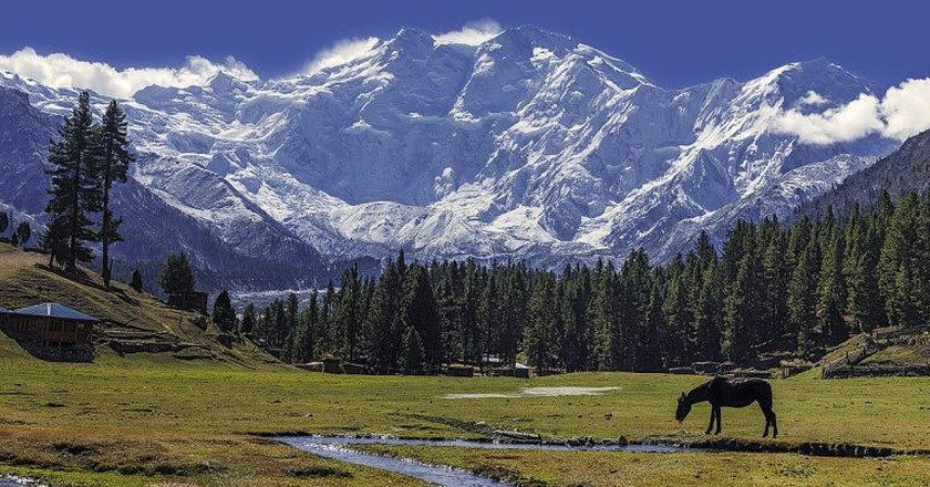 Fairy meadows with the glorious Nanga Parbat Mountain, Pakistan | © Imrankhakwani/WikiCommons