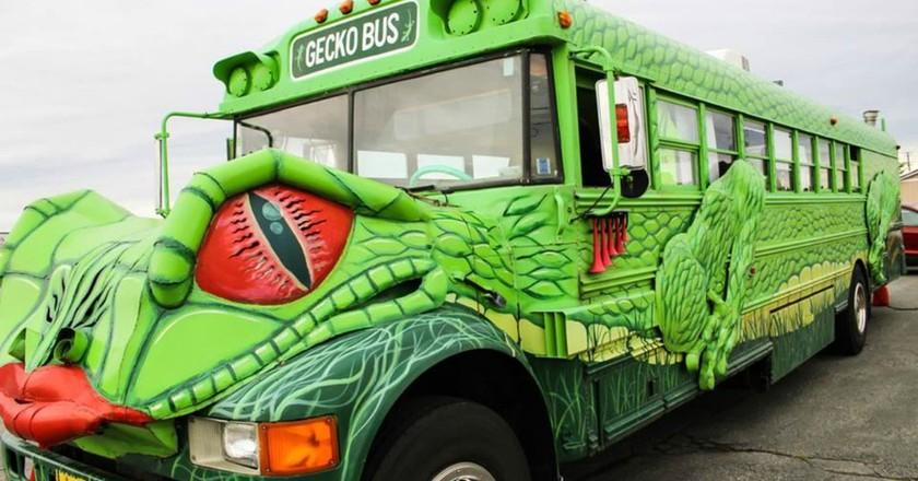 Gecko Bus | Courtesy of Gecko Bus
