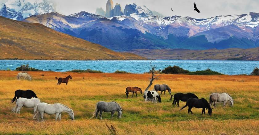 The last frontier | © kavram/Shutterstock