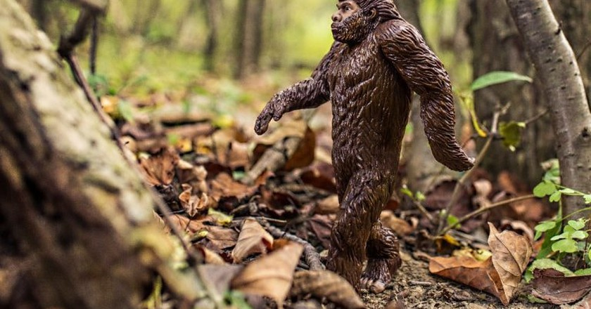 The Most Well-Known Northern California Spots For Bigfoot Sightings