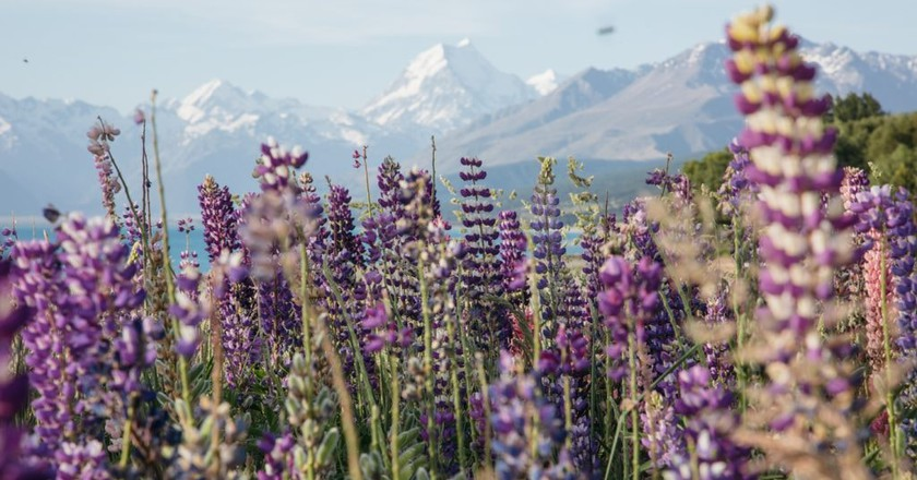 25 Captivating Photos of Mt Cook, New Zealand