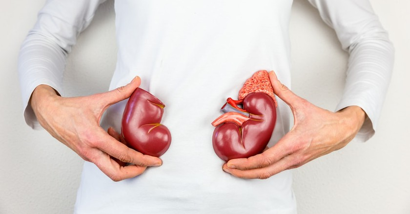 If You Were Born in This Country You're Automatically an Organ Donor