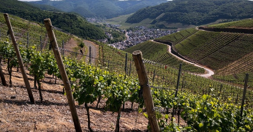 The Best Wine Tasting Tours in the Ahr Valley, Germany
