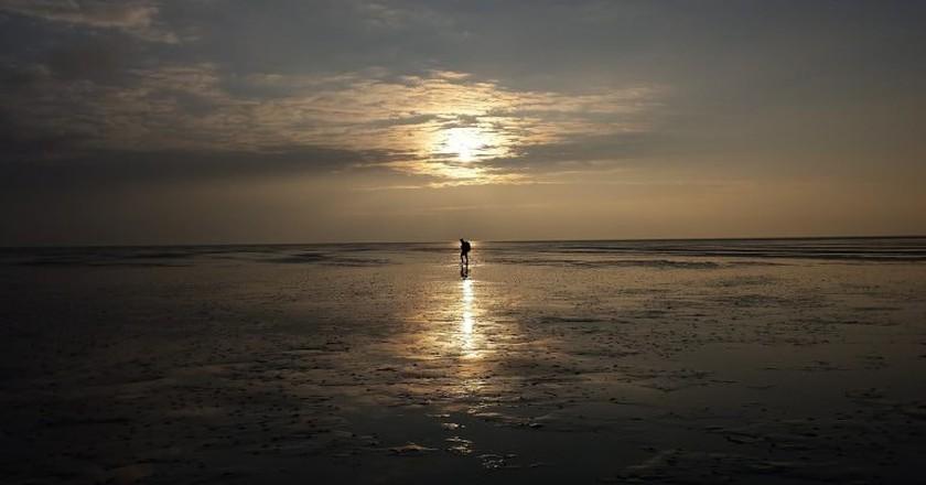 Wadlopen   © jose1964/Pixabay