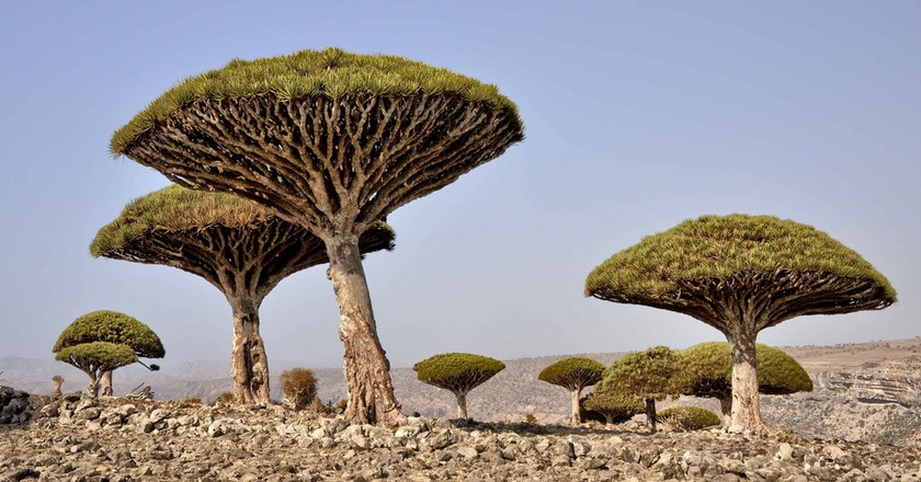 Yemen National Park | © Rod Waddington | Flickr