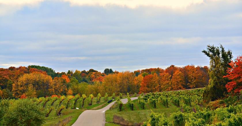 Michigan's scenic wine country | © Lola Audu/Flickr