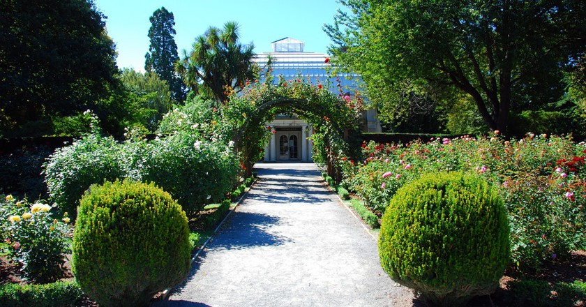 Christchurch Botanic Gardens | © Robert Young/Flickr
