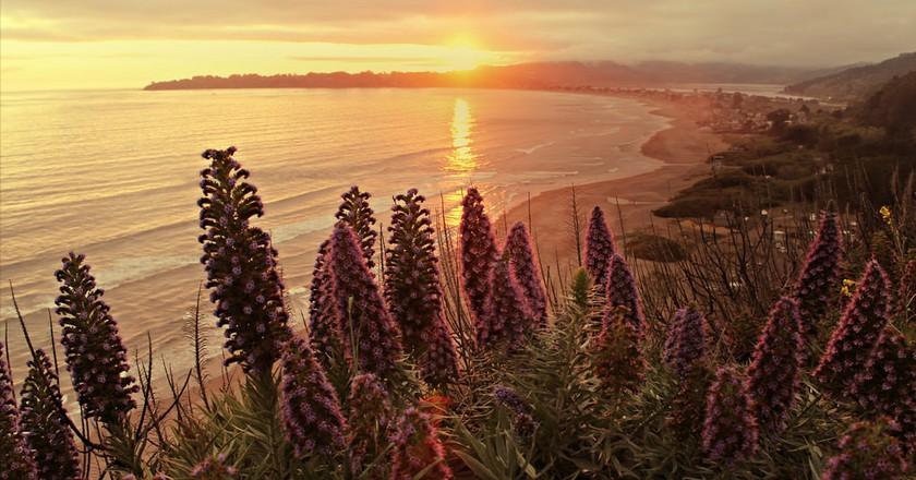 The Best Beaches Near San Francisco, CA