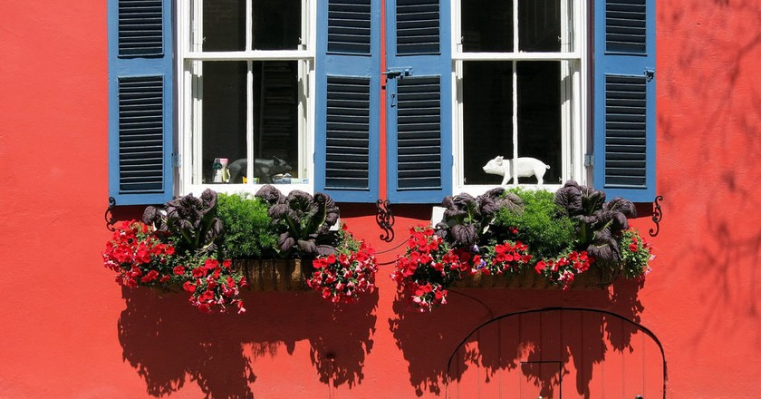 How to Spend 24 Hours in Charleston