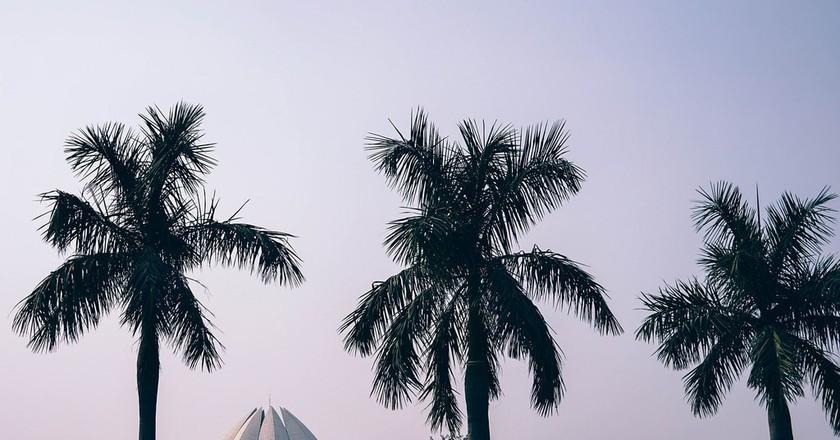 Lotus Temple, New Delhi   © Pexels / Pixabay