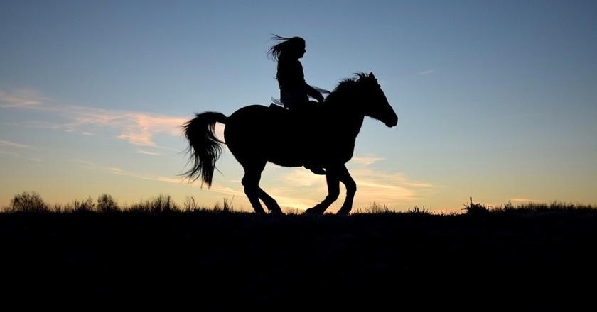 Horse riding | © PixelwunderByRebecca/Pixabay