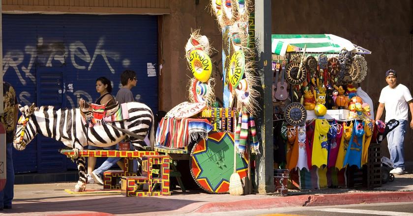 Zebra painted donkey at a cart