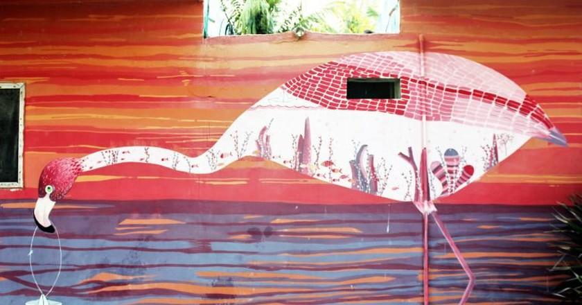 A flamingo mural on Isla Holbox