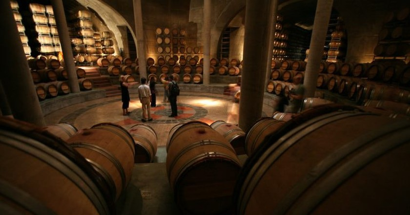 Visit the vineyards of Mendoza and their wine cellars