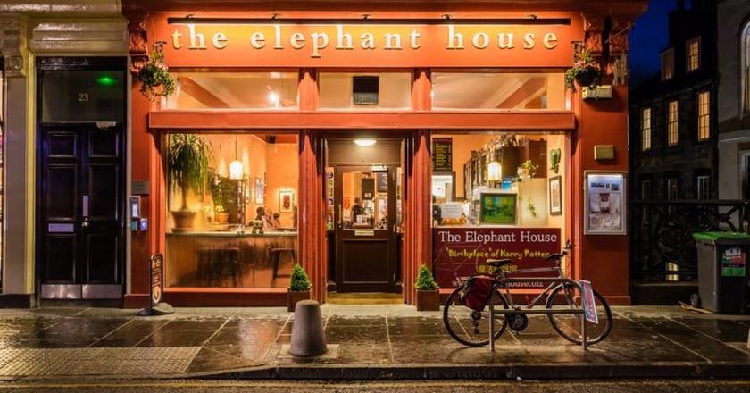 The Elephant house cafe