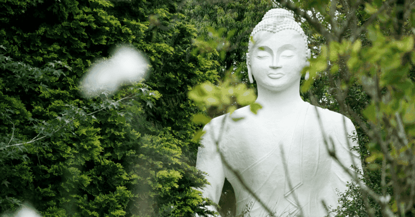 The Buddhist Retreat Centre is the ultimate place to unwind