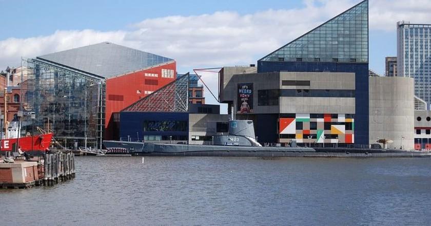 National Aquarium, Inner Harbor, Baltimore