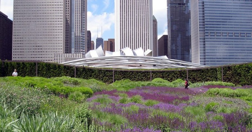 The Chicago skyline overlooking Millennium Park's Lurie Garden