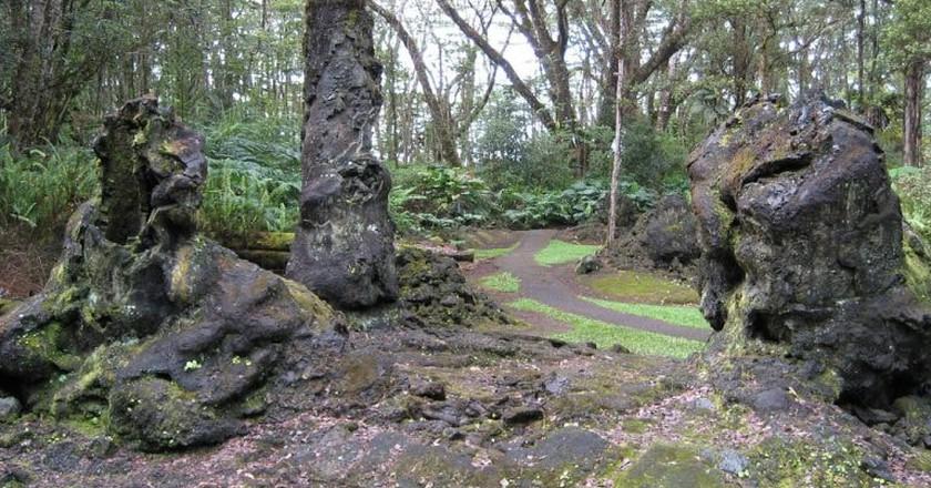 Hawaii Lava Tree State Park