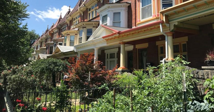 """""""Painted Ladies"""" rowhouses on the 2600 block of N. Calvert Street, Baltimore"""