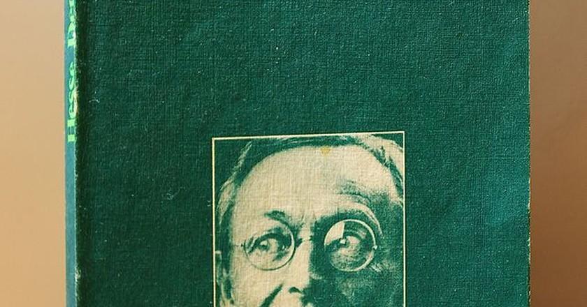 "Hermann Hesse's novel ""Steppenwolf"" inspired the theatre company's name.   © CherryX / WikiCommons"